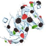 与水飞溅和冰块的新鲜水果 图库摄影
