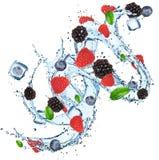 与水飞溅的新鲜的莓果 库存照片