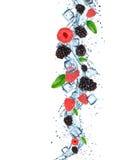 与水飞溅的新鲜的莓果 免版税库存图片