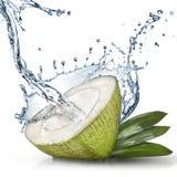 与水飞溅的绿色椰子 免版税图库摄影