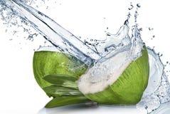 与水飞溅的绿色椰子 库存图片