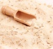 与茴香籽的盐 库存照片