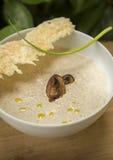 与巴马干酪芯片的蘑菇奶油色汤 图库摄影