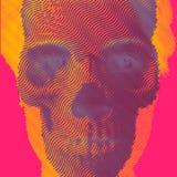 与头骨和画象的传染媒介例证 免版税库存照片