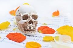 与头骨的秋天纹理 免版税库存图片