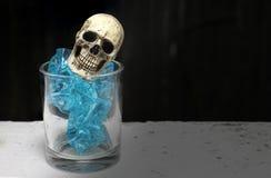 与头骨的静物画在玻璃 免版税库存照片