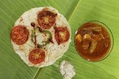 与水鹿和酸辣调味品的南印地安点心葱和蕃茄uttapam 库存图片