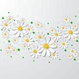 与3d春黄菊和小点的花卉背景 免版税库存照片