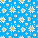 与3d春黄菊的无缝的花卉样式 免版税库存照片