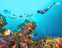 与年轻freediver妇女的美丽的珊瑚礁 免版税库存照片
