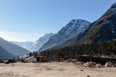 与从sideway观看的树的Yumthang谷 在对零点的途中在Lachung在冬天 北部锡金,印度 免版税库存照片