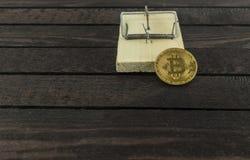 与bitcoin的老鼠陷井作为在木背景的诱饵 免版税库存照片