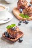 与blueberrie的红萝卜松饼 库存图片