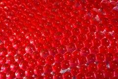 与bokeh的水红色胶凝体球 聚合物胶凝体 矽土凝胶 红色水凝胶球  与反射的水晶液体球 红色球 免版税图库摄影