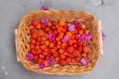 与Bouganvillea和空泡新鲜的五颜六色的红色橙色桃红色花的柳条木篮子在地面上的庭院里 库存图片