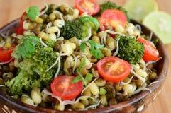 与brocolli和西红柿的新芽chaat 库存照片