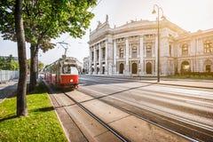 与Burgtheater和电车在日出,维也纳,奥地利的熏肉香肠Ringstrasse 免版税库存照片