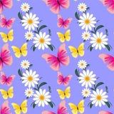 与Camomiles和蝴蝶的无缝的抽象样式 免版税库存照片
