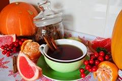 与cinamon和蜜桔圣诞节装饰的冬天茶 免版税库存图片