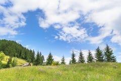 与cloudscape的夏天高山风景 库存照片