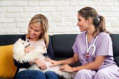 与Dog Owner和动物医生的兽医家庭急诊 图库摄影