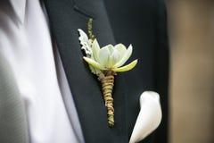与Echeveria的婚礼钮扣眼上插的花,多灰尘的米勒,石南花 图库摄影