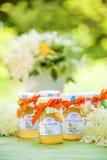 与elderflower花果冻的玻璃 免版税库存照片