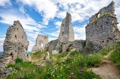 与flowrs的Plavecky城堡宽视图在前景,斯洛伐克 库存照片