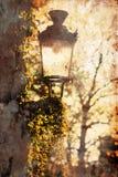 与grunge纹理的老街灯 免版税库存图片