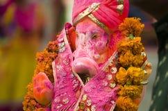 与gulal的Ganesha神象在ganesha chaturthi,在艾哈迈达巴德河边区,古杰雷特, 2015年 免版税库存图片