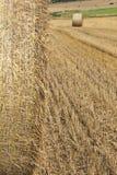 与haybales的玉米田场面 免版税图库摄影