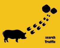 与hoofprints的猪 查寻块菌 免版税图库摄影