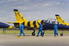 与L-39的波儿地克的蜂喷气机队乘员组在跑道飞行 库存图片