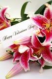 与liliums的情人节卡片 免版税图库摄影