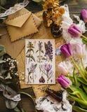 与lylac花的植物的明信片 免版税库存照片
