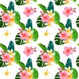 与monstera花束的热带无缝的样式离开,木槿,羽毛 时兴的植物例证 夏天背景 库存图片