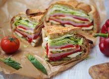 与mozarella、烤菜和火腿的地中海被按的野餐三明治 西班牙 图库摄影