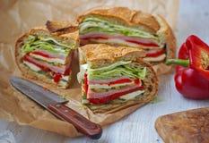 与mozarella、烤菜和火腿的地中海被按的野餐三明治 西班牙 库存照片