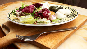 与mozarella和橄榄的沙拉 免版税库存图片