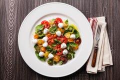 与mozarella的成熟新鲜的五颜六色的蕃茄沙拉 库存照片