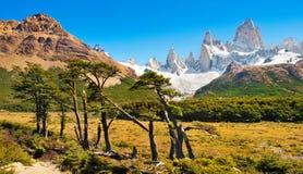 与Mt费兹罗伊的美好的风景在Los Glaciares国家公园,巴塔哥尼亚,阿根廷,南美 库存图片