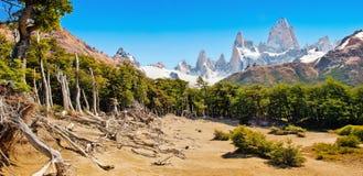 与Mt费兹罗伊的美好的风景在Los Glaciares国家公园,巴塔哥尼亚,阿根廷,南美 免版税库存照片
