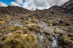 与Mt Ngauruhoe的小小河在背景 免版税库存图片