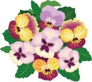 与multicolord花的花束 库存图片