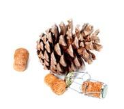 与muselet的大杉木锥体和香槟酒黄柏 免版税库存图片