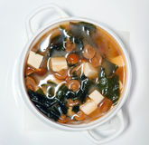 与mushrooms1的汤 免版税图库摄影