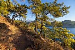 与Olympos山的土耳其风景,使绿色森林靠岸 库存照片