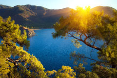 与Olympos山的土耳其风景,使绿色森林靠岸 免版税库存照片