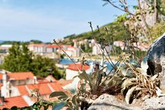 与Omis老镇的自然背景的 免版税库存照片