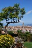与Palazzo Vecchio和Ponte Vecchio的都市风景与花的春日,佛罗伦萨 图库摄影